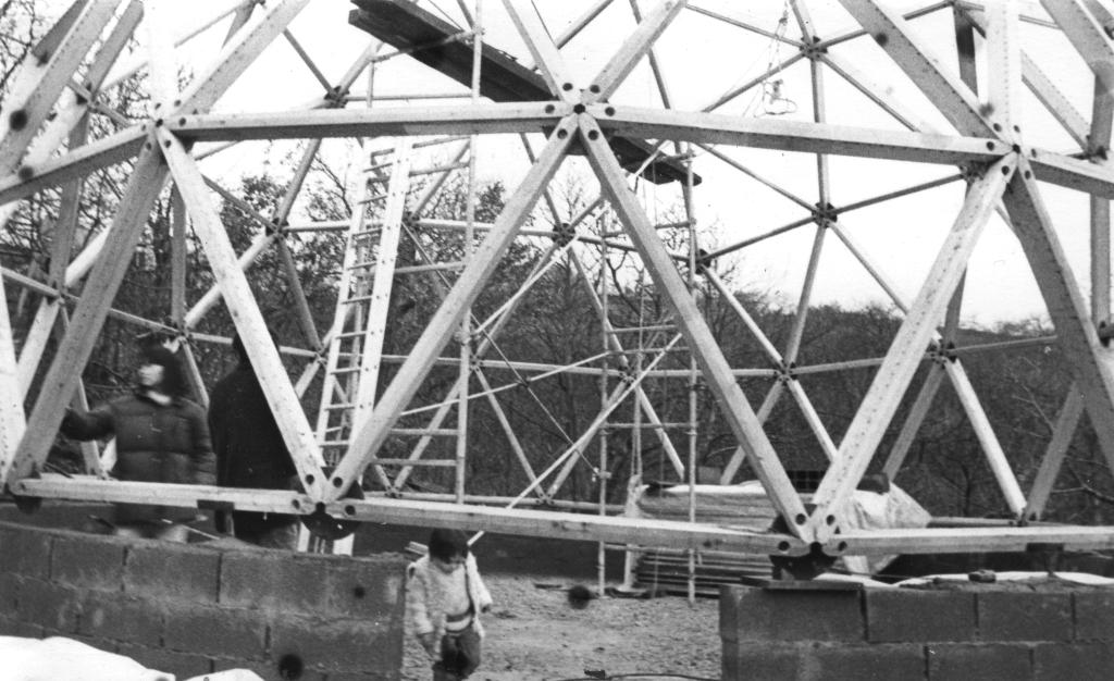 DY-Structure_1981